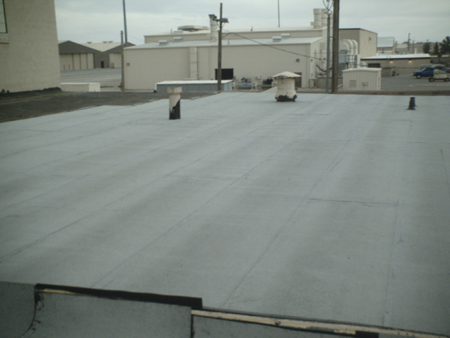 Metal Roof Metal Roof Walk Pads